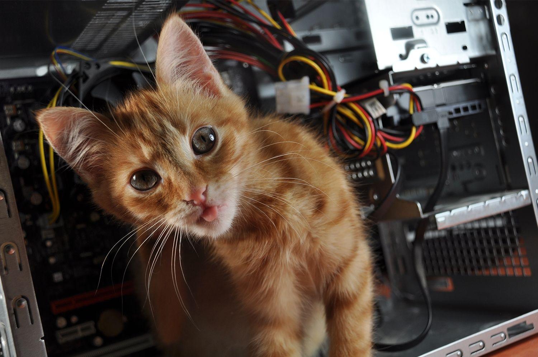 Geräuschkulisse eines Computers